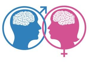 man woman brain